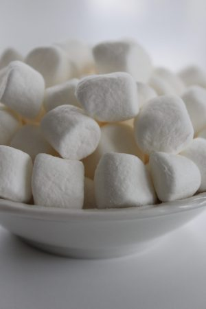 marshmallow test delayed gratification