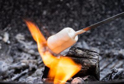 marshmallow test delayed gratification 6